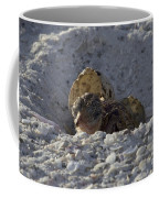 Least Tern Hatchling Coffee Mug