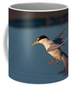 Least Tern In Flight Coffee Mug