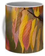 Leaves In Fall Coffee Mug