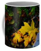 Leaves In Still Shallows Coffee Mug