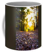 Leaves On A Forest Trail Coffee Mug by Parker Cunningham