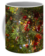 Leaves On Evergreen Coffee Mug