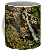 Leavitt Falls  Coffee Mug