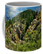 Leavitt Falls From Afar Coffee Mug