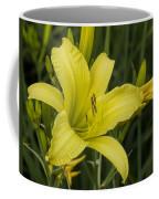 Lemon Yellow Daylily Blossom Coffee Mug