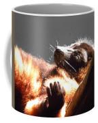 Lemur Lounging Coffee Mug