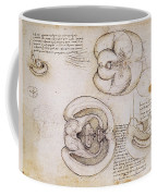 Leonardo: Ventricles, C1508 Coffee Mug