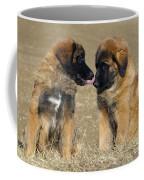 Leonberger Puppies Coffee Mug