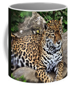 Leopard At Rest Coffee Mug