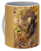 Leopard Cub Coffee Mug