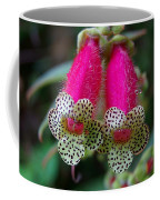 Leopard Flower - K. Digitaliflora Coffee Mug