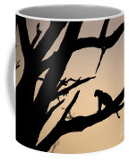 Leopard Sitting In A Tree Coffee Mug