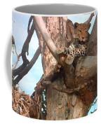 Leopard Up A Tree Coffee Mug