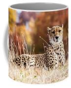 Leopard Watching Coffee Mug