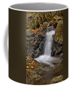 Lepetit Waterfall Coffee Mug