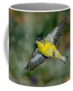 Lesser Goldfinch Male-flying Coffee Mug