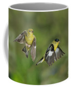 Lesser Goldfinch Pair In Flight Coffee Mug