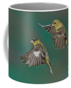 Lesser Goldfinch Pair In The Air Coffee Mug