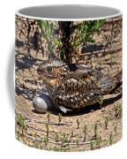 Lesser Nighthawk Chordeiles Acutipennis Coffee Mug