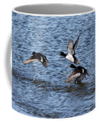 Lesser Scaup Ducks Coffee Mug