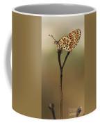 Lesser Spotted Fritillary Coffee Mug by Alon Meir