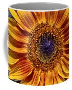 Let The Sun Shine In Coffee Mug