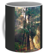 Let Your Light Shine Through Coffee Mug