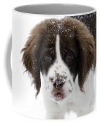 Lets Play Coffee Mug by Mike  Dawson
