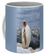 Leucistic...  Coffee Mug