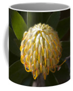 Leucospermum  -   Yellow Pincushion Protea Coffee Mug