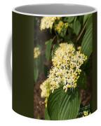 Lewis Landscape Arboretum Coffee Mug