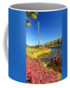 Lewis River Fall Coffee Mug
