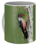 Lewiss Woodpecker With Fruit In Beak Coffee Mug
