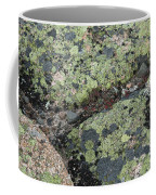 Lichen And Granite Img 6187 Coffee Mug