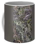 Lichen And Moss Coffee Mug