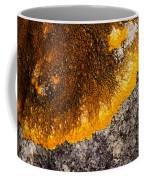 Lichen It Coffee Mug