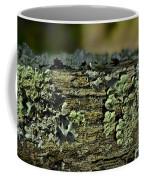 Lichen Macro I Coffee Mug