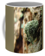 Lichen Mimic Coffee Mug