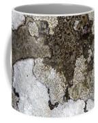 Lichen Mosaic Coffee Mug