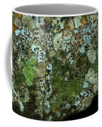 Lichen On Rock In Suck Creek Coffee Mug