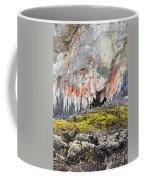Lichen On Sea Beach Rock Coffee Mug