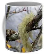 Lichen On Tree Coffee Mug