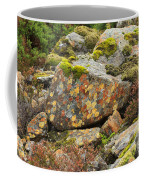 Lichens And Moss In Glen Strathfarrar Coffee Mug