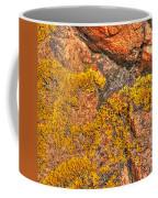 Lichens On The Shoreline Rocks 2 Coffee Mug