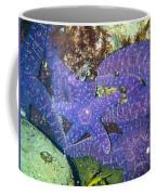 Life Among The Stars Coffee Mug