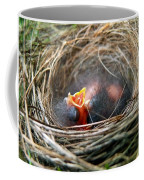 Life In The Nest Coffee Mug by Christina Rollo