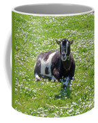 Life Is A Bed Of Roses Coffee Mug