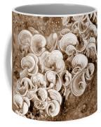 Life On The Rocks In Sepia Coffee Mug