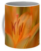 Light Orange Coffee Mug