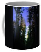 Light Through The Forest Coffee Mug